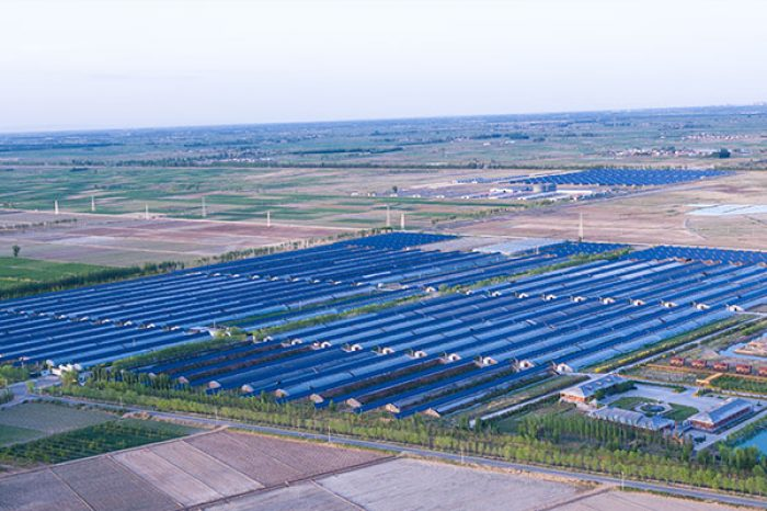 Photovoltaic Power Plant and Agriculture Integration Project